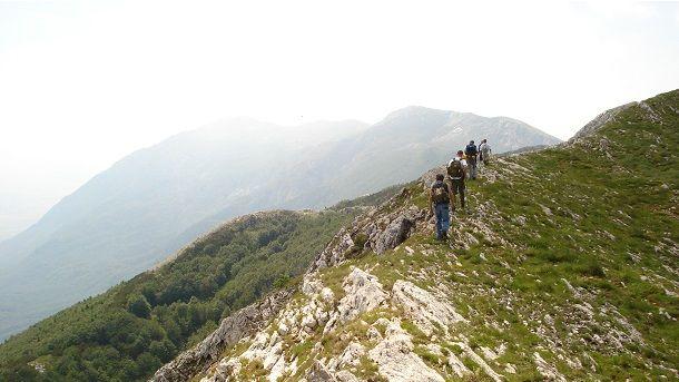 dan planinara