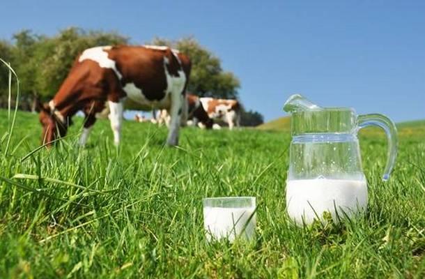 mlijeko02