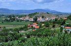 Pogled prema Gradini dio sela Udovičići u pozadini centar Sinja