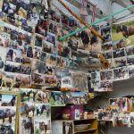 U prizemlju obiteljske kuće u Brnazama u jednoj prostoriji na zidovima ima oko fotografija konja