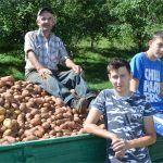 Tu su vridne i poštene ruke Ante Romića i njegova dva unuka Marka i Mateja
