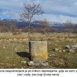 Pašnjačka zona raspostranjena je po krškim depresijama gdje se osim plodnog tla može nać i voda bez koje života nema x